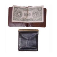 pwp-003-purse-ty-34-dollar
