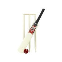 sgb-006-cricket-bat-set